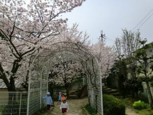 白百合幼稚園.3.jpg