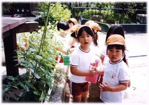 いさがわ幼稚園1